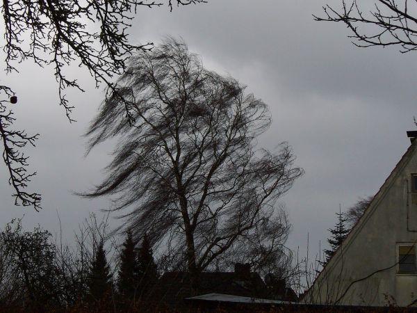 Sturm Wetter